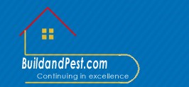 Building and Pest Inspections in Brisbane