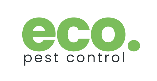 Eco Pest Control Brisbane: Phone: 07 3184 8488